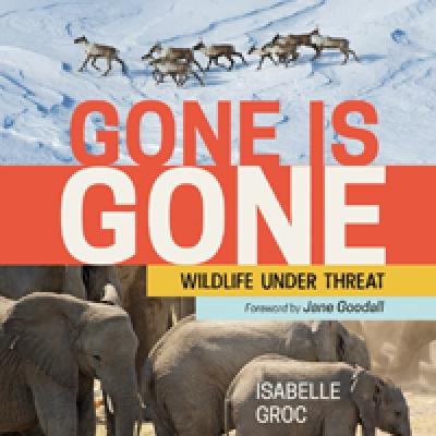 Gone is Gone (2019)