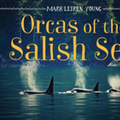 Orcas of the Salish Sea (2020)